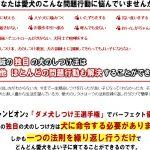 「森田誠の愛犬と豊かに暮らすためのしつけ法」 DVD 2枚セット